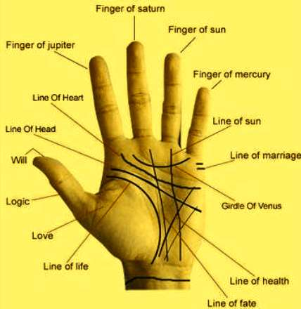 Future Husband Prediction By Palmistry