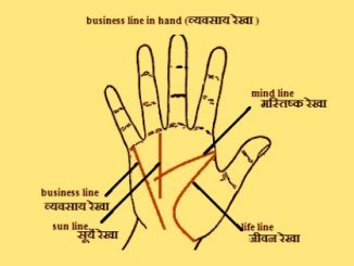 Palm Reading For Business Success