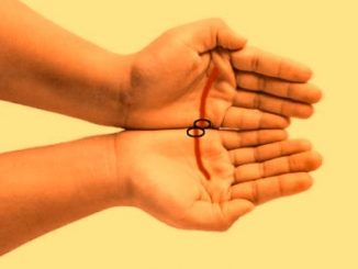 Attractive Spouse Palmistry