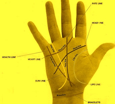 Education Line In Palmistry
